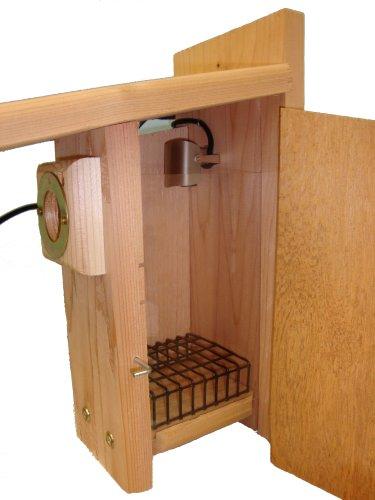 Birdhouse Spy Cam Peek-a-boo Ultimate Bird House