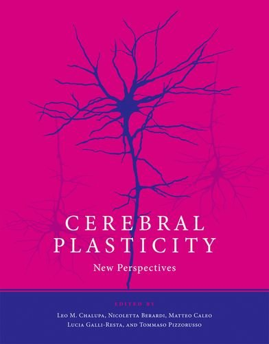 Cerebral Plasticity: New Perspectives (The MIT Press)