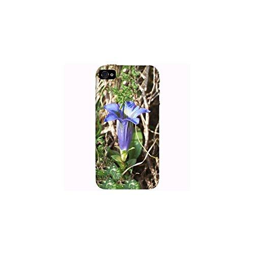 Coque Apple Iphone 4-4s - Gentiana asclepiadea L