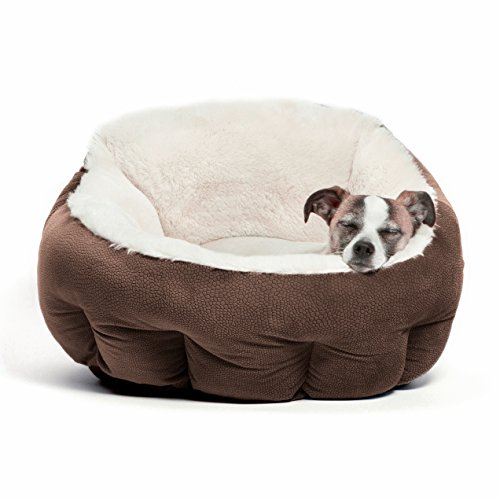 Best Friends by Sheri OrthoComfort Deep Dish Cuddler, Ilan, Dark Chocolate (20x20x12″) – Premium