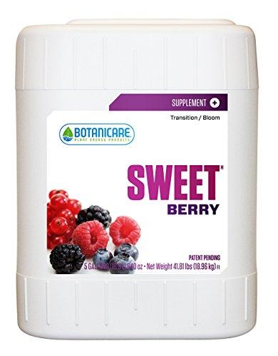 Sweet Berry - 8