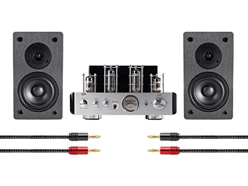 Monoprice 113807 Stereo Tube Amp System with Bluetooth & Speakers