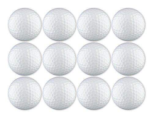 EnjoyLife Inc Golf Ball 12-Pack White Blank