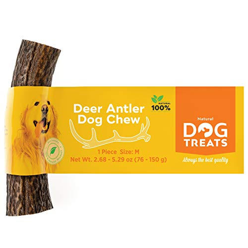 Premium 100% Natural Deer Antler Dog Chew Long Lasting Toy for Dogs