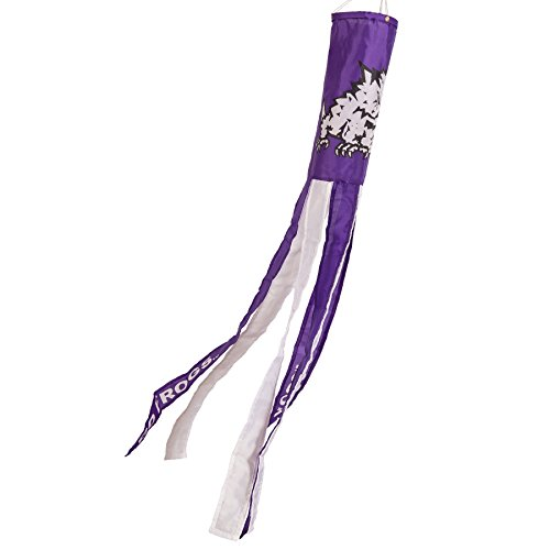 College Flags and Banners Co. Texas Christian Horned Frogs Windsock