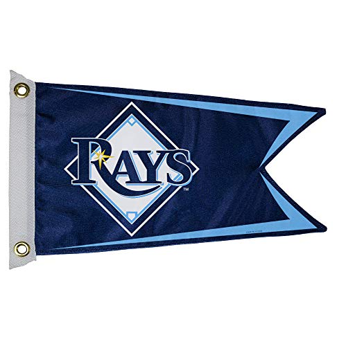 MLB Tampa Bay Rays Boat and Golf Cart Flag for $<!--$22.63-->