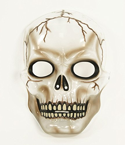 Transparent Skull Full Mask Adult Accessory