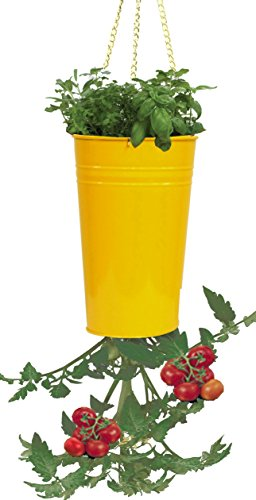 (Houston International 8398E SAFF 7-Inch Steel Hanging Planter, Saffron)