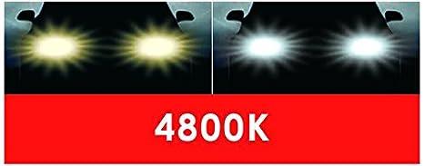 9005 Dino 130072 HB3 Halogenlampen Xenon-Look 60W//12V E13