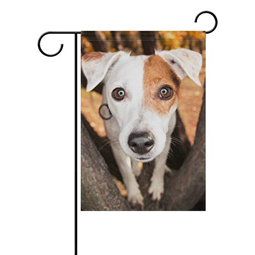 HOOSUNFlagrbfa Parsons Jack Russell Terrier Dog Decorative Double Sided Garden Flag 12x18 inch
