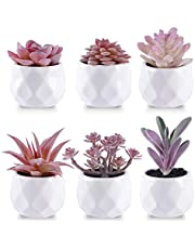 CEWOR 6pcs Artificial Succulents Plants in Pots for Desk Home Office Decor, Small Fake Potted Plant, Mini Faux Pink Succulent in White Ceramic Pot for Shelf Living Room Bedroom Bathroom Decoration