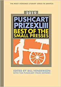 The Pushcart Prize XX: Best of the Small Presses 1996