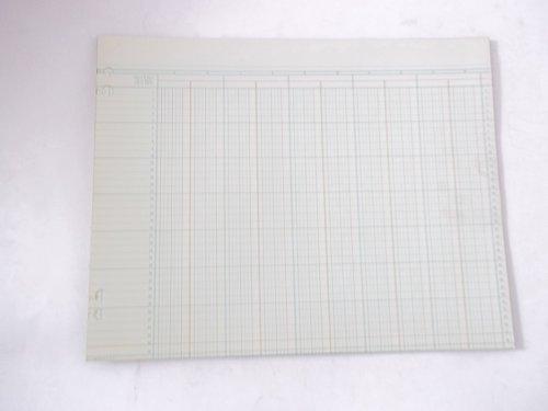 Boorum Pease G22-14 20 sheets Green Columnar Sheets 11'' x 14'' 14 Column by Boorum & Pease