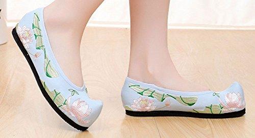 Avacostume Vrouwen Lotus Borduren Puntige Platte Schoenen Blauw
