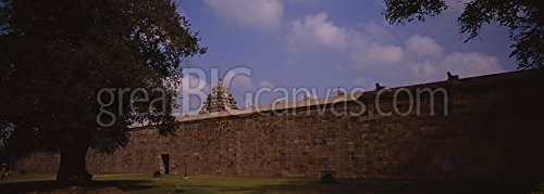 Tree in front of a wall of temple, Airavateswarar Temple, Darasuram, Kumbakonam, Thanjavur, Tamil Nadu, India Gallery-Wrapped Canvas