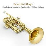 Eking Standard Student Trumpet Brass Gold Bb