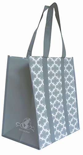 Buti Earth Bag Extra Large Reusable Shopping Bags with Handles Reinforced Bottom, Stay Open Fold Flat, Premium Wipe Clean Totes