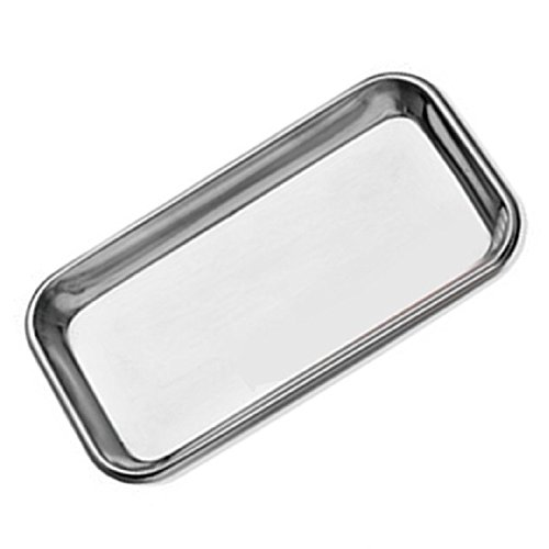 Instrument Body - Stainless Steel Flat Lab Instrument Tray Dental Medical Body Piercing Serving Dish