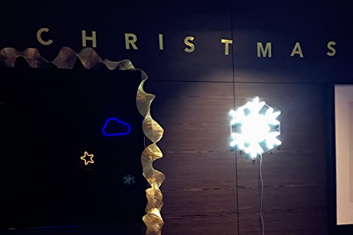 DragonX LED Neon Sign Light-Home and Party Decorations-12 Volts PVC Tube Acrylic Wall Art-Big Snowflake by DragonX (Image #1)