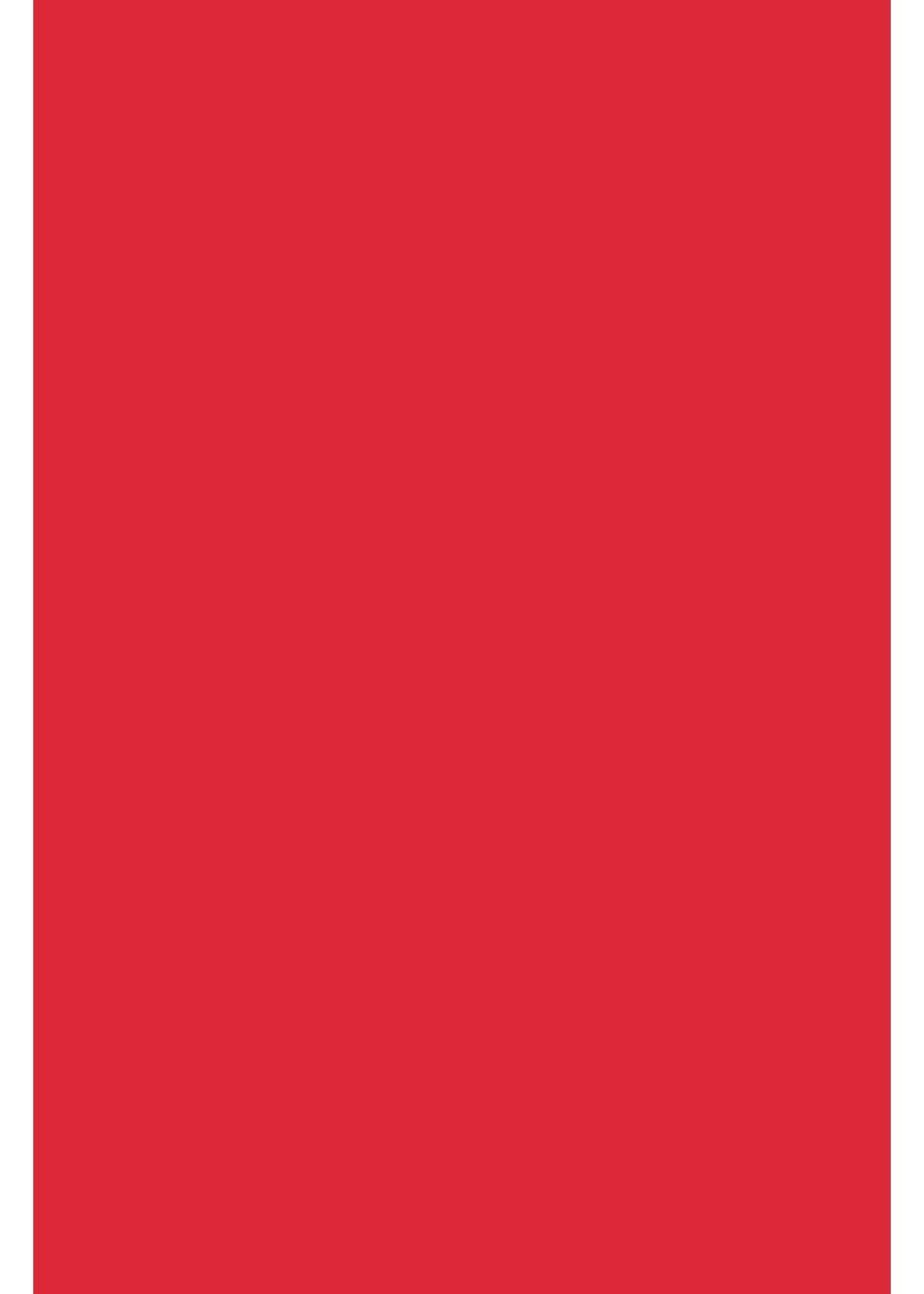 A4 Transferfolie//Textilfolie zum Aufb/ügeln auf Textilien perfekt zum Plottern Film:Neon Himbeere einzelne Folien P.S