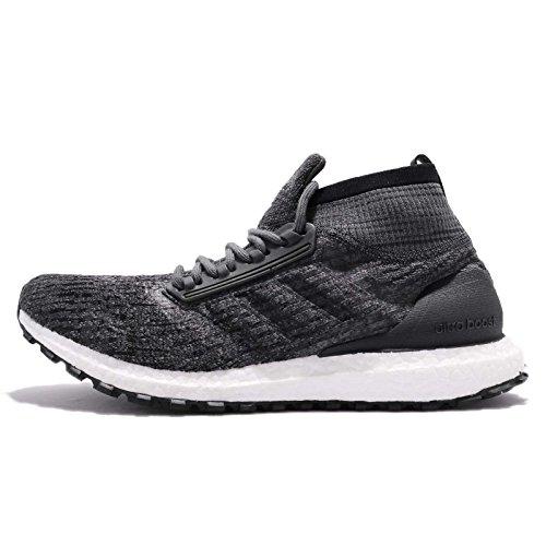adidas Men UltraBOOST All Terrain LTD, Carbon/White Carbon/White