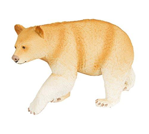 kermode bear - 1