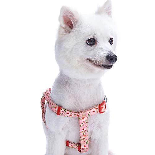 Blueberry Pet Step-in Spring Scent Inspired Floral Rose Baby Pink Dog Harness, Chest Girth 20 - 26, Medium, Adjustable Harnesses for Dogs