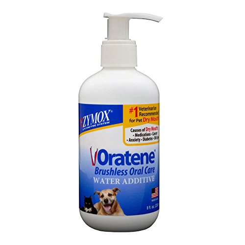 Care Dental Cat Dog (Pet King Brands Zymox Water Additive Oral Solution, 8-Ounce Pump Bottle)