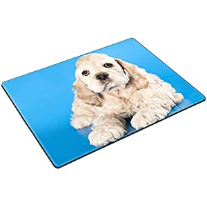 MSD Placemat Non Slip Natural Rubber Heat Resistance Table Mat Designed for 11452165 American Cocker Spaniel Dog 4