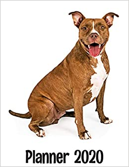 Pitbull Calendar 2020 Planner 2020: Pitbull Dog Weekly and Monthly 2020 Planner