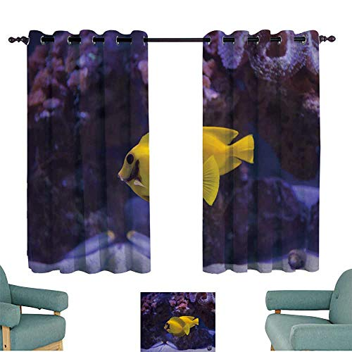 (WinfreyDecor Thermal Curtains Mimic Surgeon Fish Suitable for Bedroom Living Room Study, etc.72 Wx63 L)