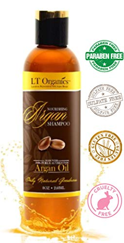 Argan Oil Shampoo - Paraben FreePromotes Hair Growth - 100% Safe for Women, Men, Children and Color Treated Hair. Natural, Professional Quality Stops Frizz, Leaves Hair Soft & Silky 8oz