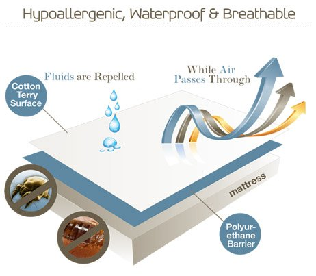 SafeRest Premium Hypoallergenic Waterproof Certified Bed Bug Proof Crib Mattress Encasement - Vinyl, PVC and Phthalate Free - (52'' x 28 x 6 in.) by SafeRest (Image #2)