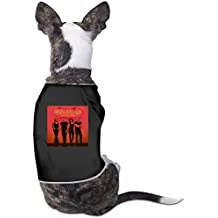Pain Killer - Little Big Town Dogs Coats Design ColoName