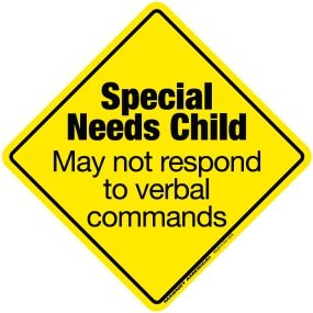 Special Needs Child Emergency DECAL (non-magnetic!)