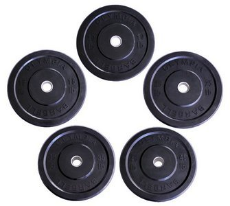 Wright Bumper Plates - 260 lb Set - Great Crossfit & Olympic Lifting