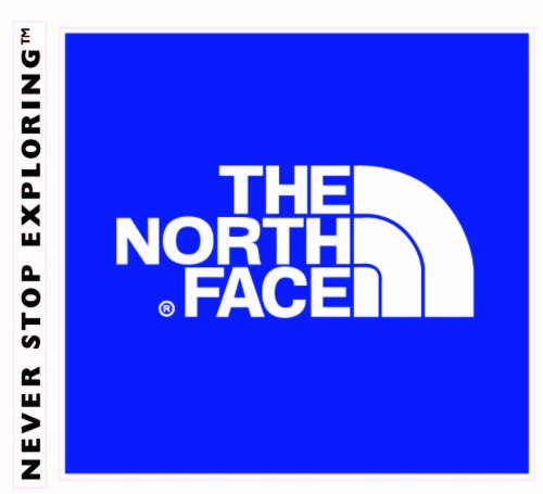 Amazon.com: 24 wall decals stickers The North Face logo. Good size ...