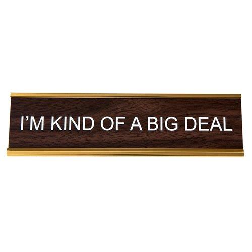 i am kind of a big deal - 6