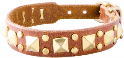 "Paco Collars - ""Mini Rocko"" - Handmade Leather Small Dog Collar- 3/4"" Wide - Brass - Chocolate 10""-12"""