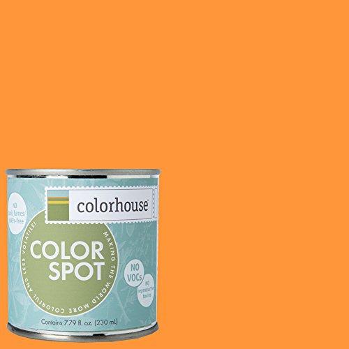 inspired-eggshell-interior-colorspot-paint-sample-create-02-8-oz