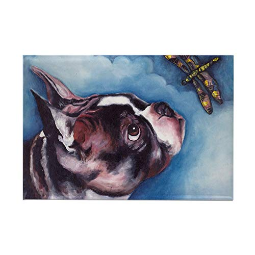 CafePress Boston Terrier And Dragonfly Rectangle Magnet, 2