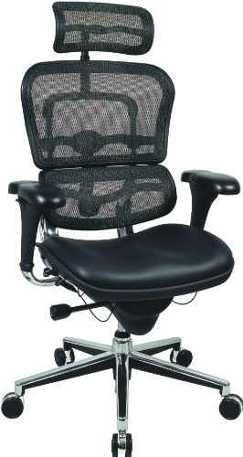 - Raynor Ergohuman Ergonomic Chair - Mesh Back, Leather Seat, with Headrest