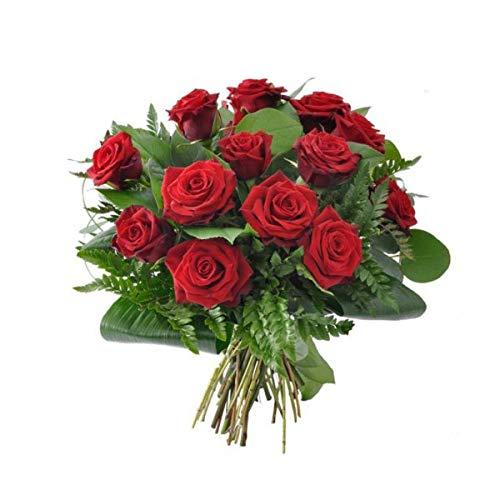 Ramo de 12 Rosas Rojas y Frescas