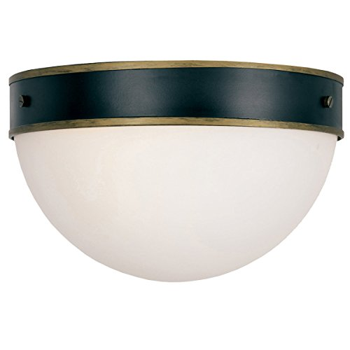 Crystorama CAP-8503-MK-TG Capsule - Two Light Outdoor Flush Mount, Matte Black/Textured Gold Finish with Opal Frosted Glass