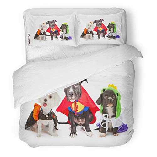 Semtomn Decor Duvet Cover Set King Size Three Cute Little Puppy Dogs Dressed Up in Halloween 3 Piece Brushed Microfiber Fabric Print Bedding Set Cover]()