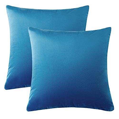 WLNUI Soft Velvet Solid Sky Blue Decorative Square Throw Pillow Covers Set Cushion Case for Sofa Couch Home Decor 18x18 Inches 45x45 -