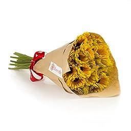 Yellow Gerbera Daisies (15 Stems) Hand-tied Bouquet- No Vase