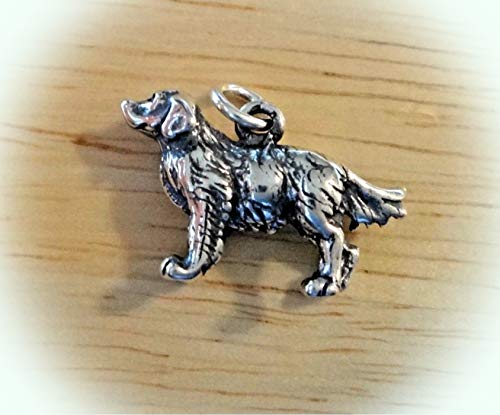 Sterling Silver 3D 13x20mm 3-4 Gram Golden Retriever Dog Charm Vintage Crafting Pendant Jewelry Making Supplies - DIY for Necklace Bracelet Accessories by CharmingSS