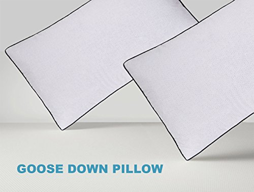 Basic Beyond Goose Down Bed Pillow King (2 PACK) Three Chambers Design 100% Cotton Cover Soft Sleeping Goose Down Pillow (2 Chamber Pillow Top)