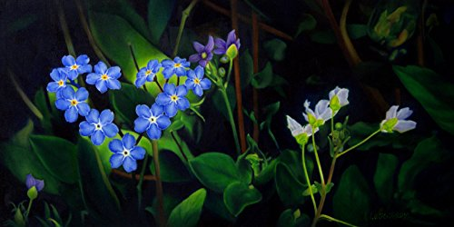 """Forget Me Not"" by Linda Lucas Hardy"